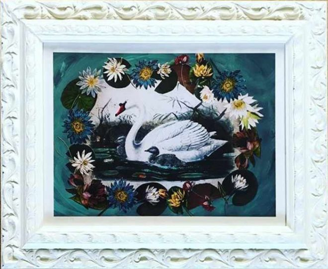 Diana Wilson Arcana Swan picture