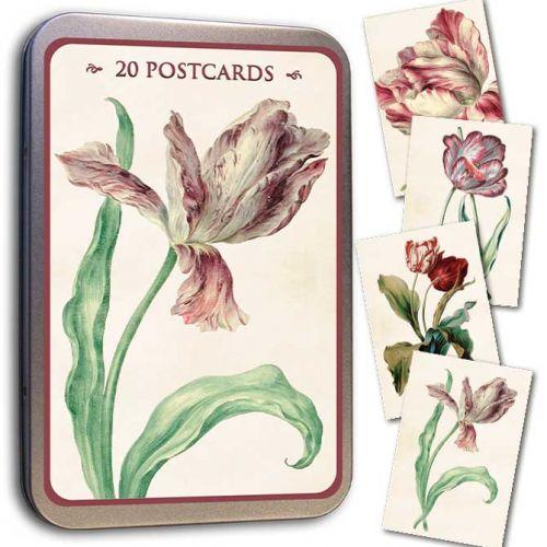 Sköna Ting Tulip Postcard Tin